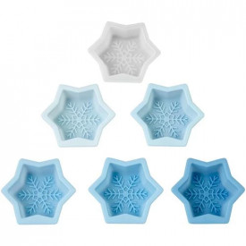 6 forme silicon Fulg