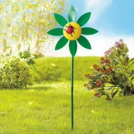 Floarea girueta verde cu buburuza