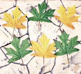 Set 6 frunze mari