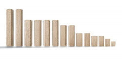 Festool Cepuri din lemn de fag DOMINO D 12x100/100 BU