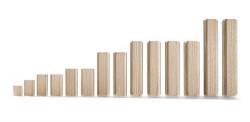Festool Cepuri din lemn de fag DOMINO D 14x100/80 BU