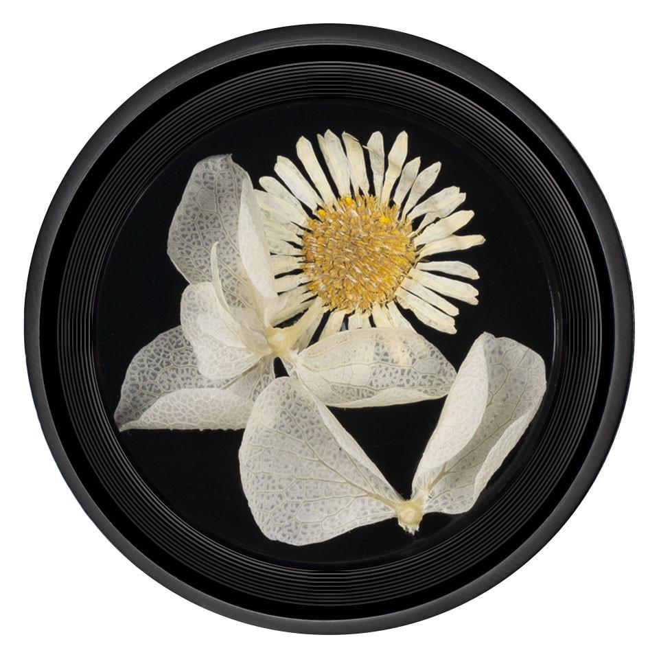 Flori Uscate Unghii LUXORISE Blossom #08 imagine 2021 kitunghii