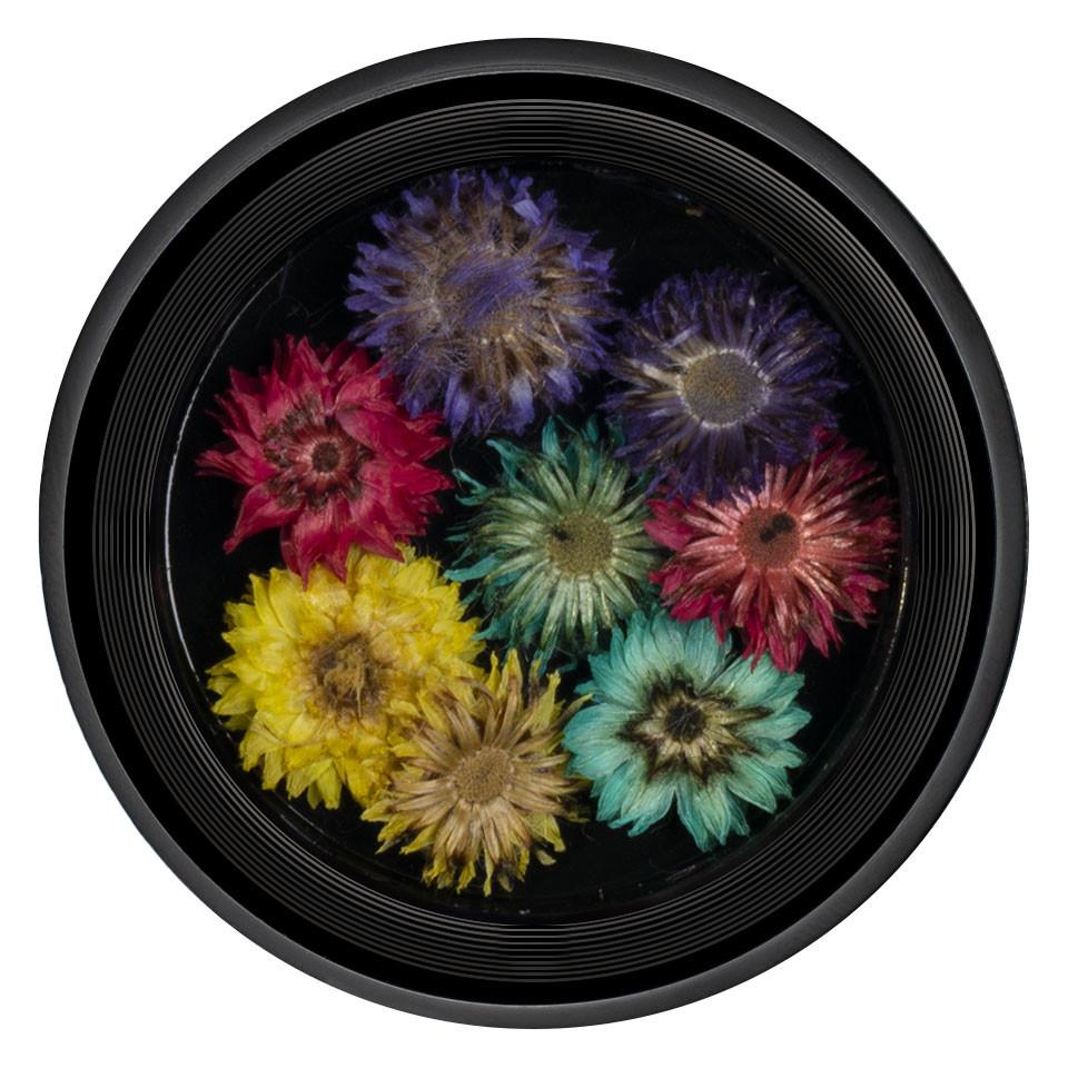 Flori Uscate Unghii LUXORISE Blossom #04 imagine 2021 kitunghii