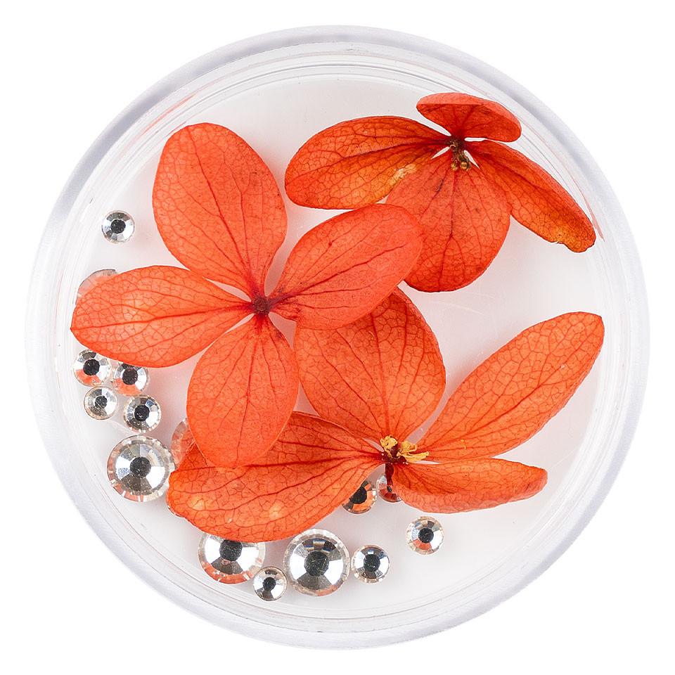Flori Uscate Unghii LUXORISE cu cristale - Floral Fairytale #20 imagine 2021 kitunghii