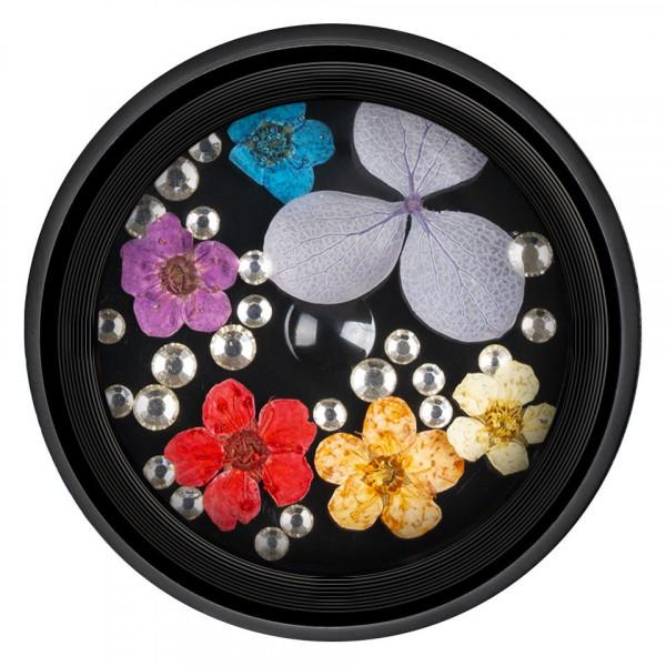 Poze Flori Uscate Unghii LUXORISE cu cristale - Floral Fairytale #07