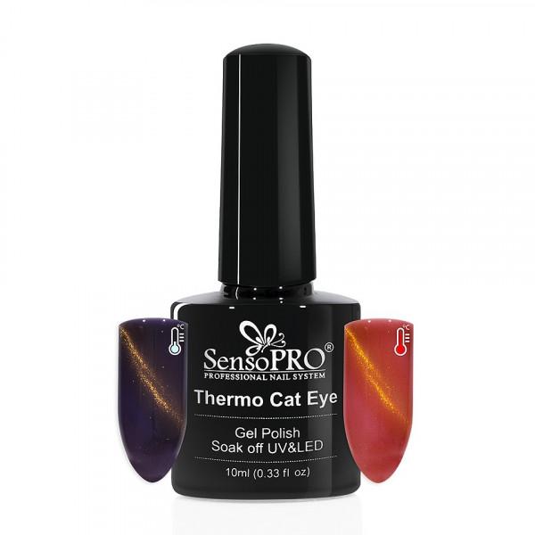 Poze Oja Semipermanenta Thermo Cat Eye SensoPRO 10 ml, #19