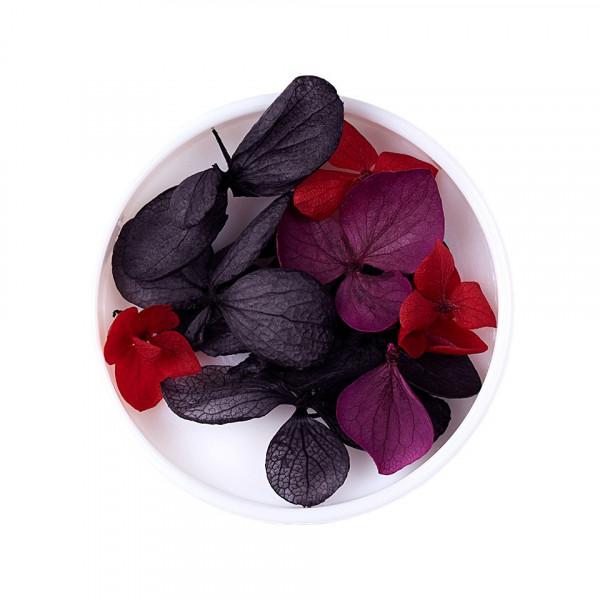 Poze Flori uscate naturale, Easy Nail Art - Burghundy