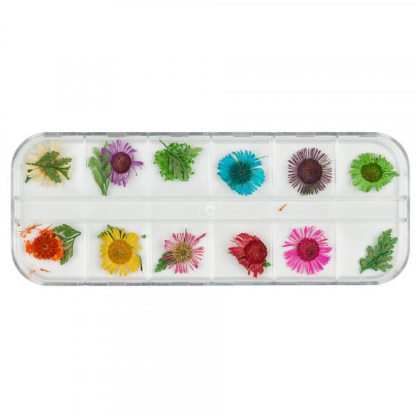 Poze Flori uscate pentru unghii Paint Me Some Flowers