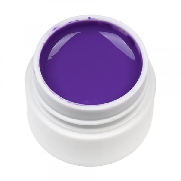 Poze Gel UV Color ENS PRO #036 - Aubergine