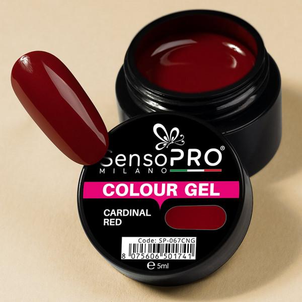 Poze Gel UV Colorat Cardinal Red 5ml, SensoPRO Milano
