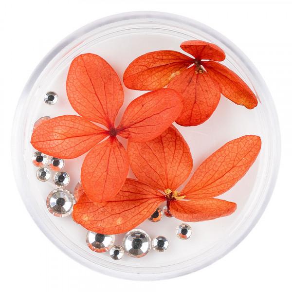 Poze Flori Uscate Unghii LUXORISE cu cristale - Floral Fairytale #20
