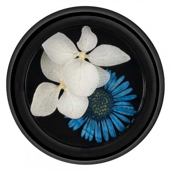 Poze Flori Uscate Unghii LUXORISE Blossom #07