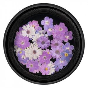 Decoratiune Unghii Nail Art LUXORISE, Electric Flowers