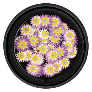 Decoratiuni Unghii Nail Art LUXORISE, Believe Flowers