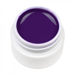 Gel UV Color ENS PRO #008 - Sugar Plum