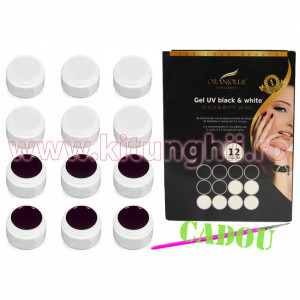 Set 12 geluri UV Color Black & White + CADOU