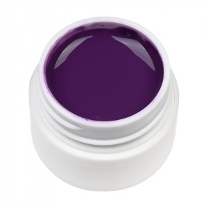 Gel UV Color ENS PRO #022 - Mulberry Purple