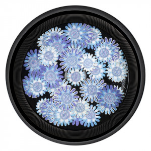 Decoratiuni Unghii Nail Art LUXORISE, River Flowers