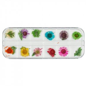Flori uscate pentru unghii Paint Me Some Flowers