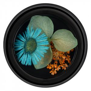 Flori Uscate Unghii LUXORISE Blossom #09