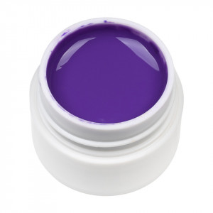 Gel UV Color ENS PRO #036 - Aubergine