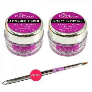 Kit Acryl Pudra French Promotie #09