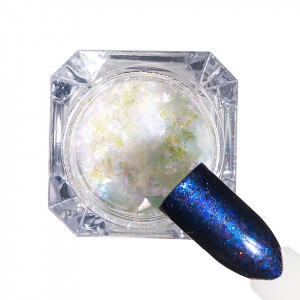 Pigment unghii Ice Effect #81 cu aplicator - LUXORISE