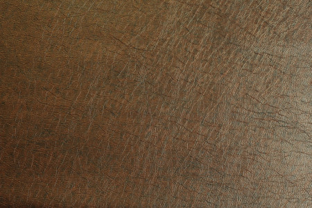 linea eko koža