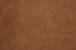Panamera 6 Brown