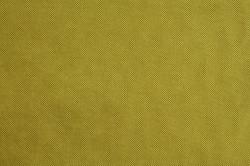 Panamera 9 Pistachio