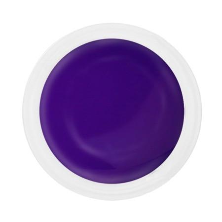 Gel uv color Lila Rossa 5 g E2015