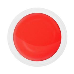 Gel uv color Lila Rossa 5 g E2808