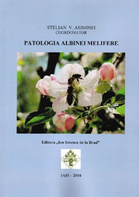 Poze PATOLOGIA ALBINEI MELIFERE