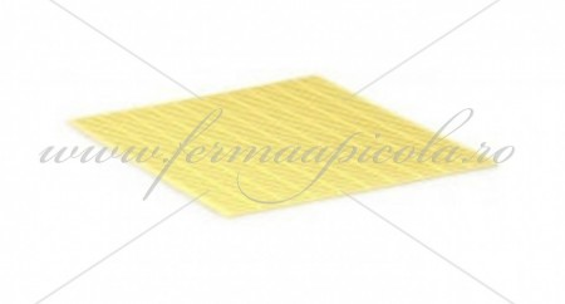 Poze Gratie Hanneman plastic - 10 R - NICOT