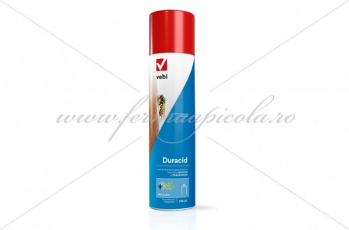 Poze Spray contra viespilor - Duracid -750 ml