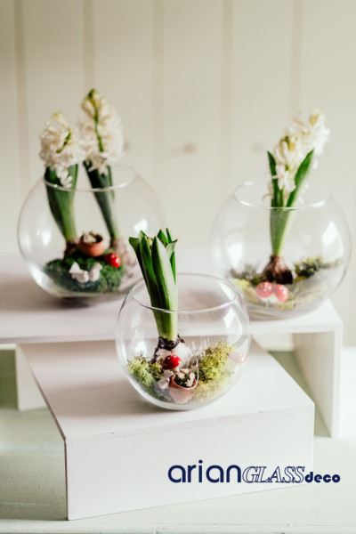 boluri sticla florarii