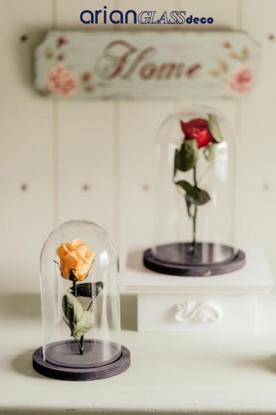 bol cupola pentru trandafiri