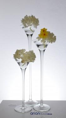 fructiera sticla