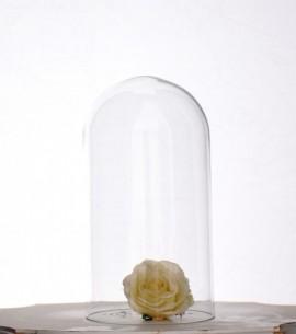 cupole sticla engros