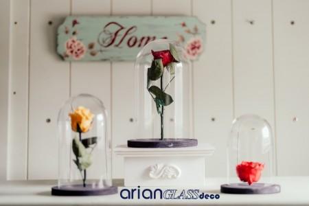cupole trandafiri criogenati