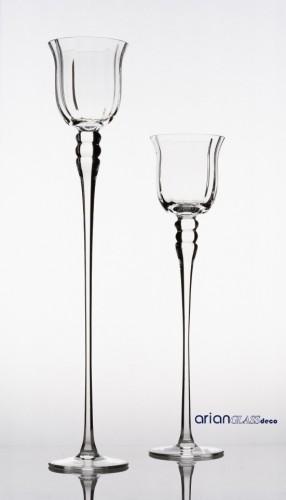 sfesnic sticla