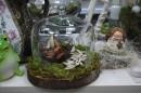 Felii bustean 22-27 cm