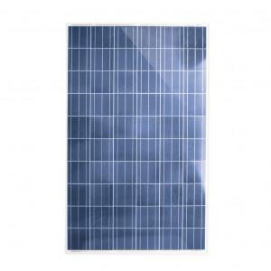 Pro25024 Epcom Power Line Modulo Fotovoltaico Policristalino 250