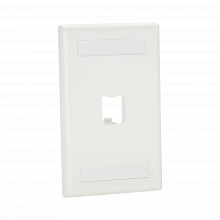 Cfpl1why Panduit Placa De Pared Vertical Clasica Salida Par