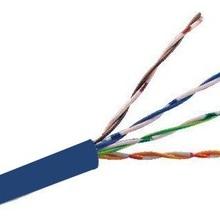 TVD119044 SAXXON SAXXON OUTPCAT6AAZO - Cable UTP 100 cobre