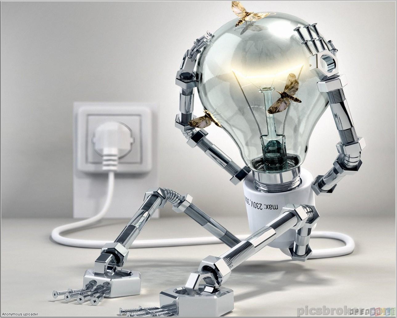 Iluminat & Electrice
