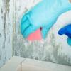 Detergenti Uz Universal