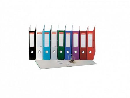 Biblioraft Plastifiat 75 mm, Economy Esselte, diverse culori
