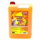 Detergent vase Cloret 5L Citrus, Bery, Mar