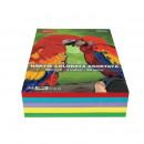Hartie colorata A4, 500 coli 5 culori DACO 80g/mp